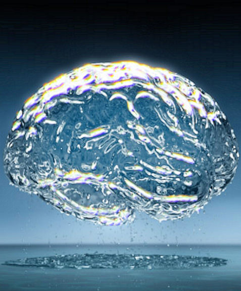 Brain made of quantum water
