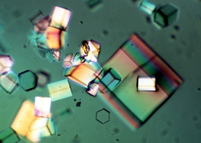 Protein Crystals