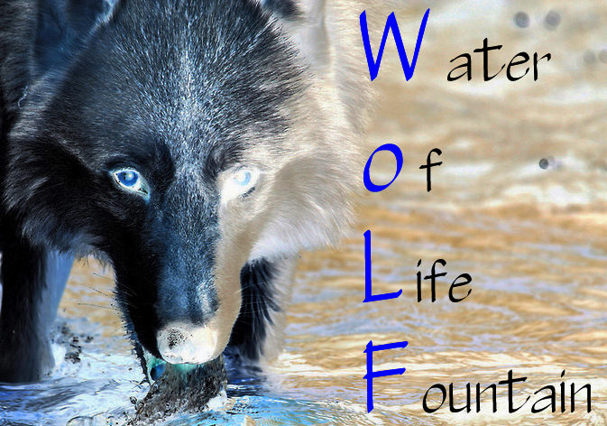 WoLF or Water of Life Fountain branding image for WoLf Commercial unit and all others too